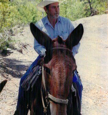 STEVE TERRY KRODLE, 73, QUINLAN,  OCTOBER 13, 1947 – DECEMBER 8, 2020